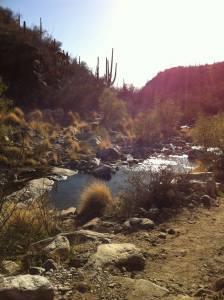 Congregation Beit Simcha and Northwest Jewish Federation Shabbat Hike and Service @ Catalina State Park parking lot   Tucson   Arizona   United States